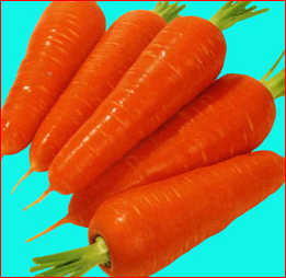 "The wonderful benefits of an orange root vegetable ""carrot""."