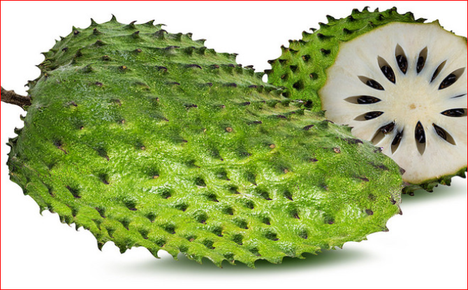 Soursop - Facts, Health Benefits, Side Effects and More