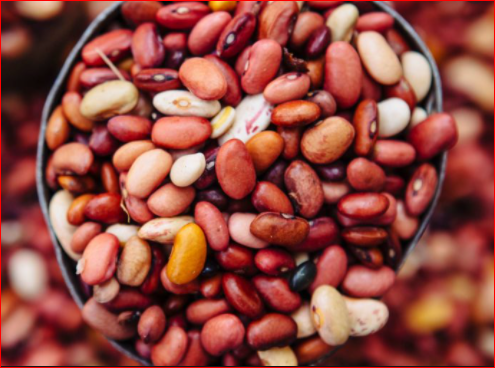 Beans – Health Benefits, Negative Effects And More