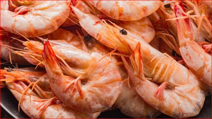 Shellfish Farming Can Boost Nigeria's Economy – Expert