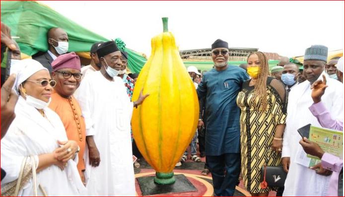 Nigeria Can Be The World's Largest Cocoa Producer – Nanono