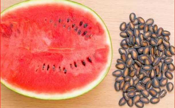 Is Watermelon Or Watermelon Seeds Good For Fertility?